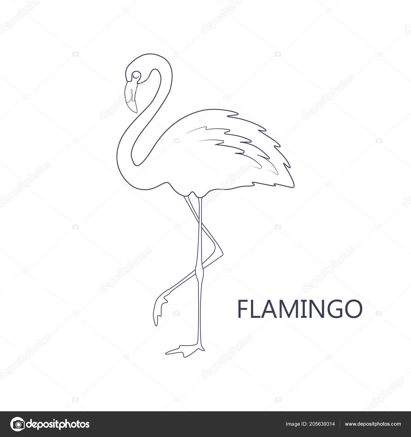 Coloring Book Page Children Cartoon Flamingo Vector Illustration