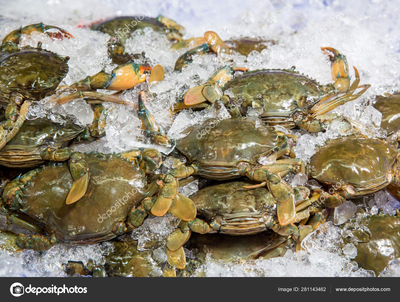 Fresh Crabs Seafood Market Arthropod Phylum Armature Claw Concept