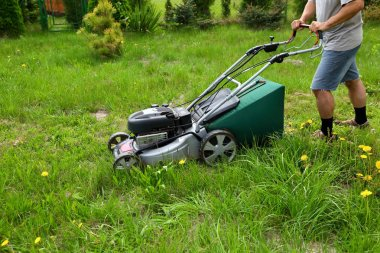 The man cuts the lawn with an combustion mower in the backyard garden.