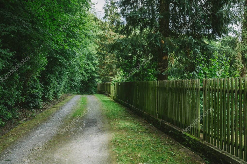 rural road near wooden fence and trees in Wurzburg, Germany
