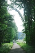 Fotografie malebný pohled venkovské silnice mezi stromy v Hamburku, Německo