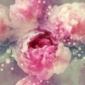 Foto a akvarel vzor bezešvé s kresbou digitálních médií květy růžové pivoňky