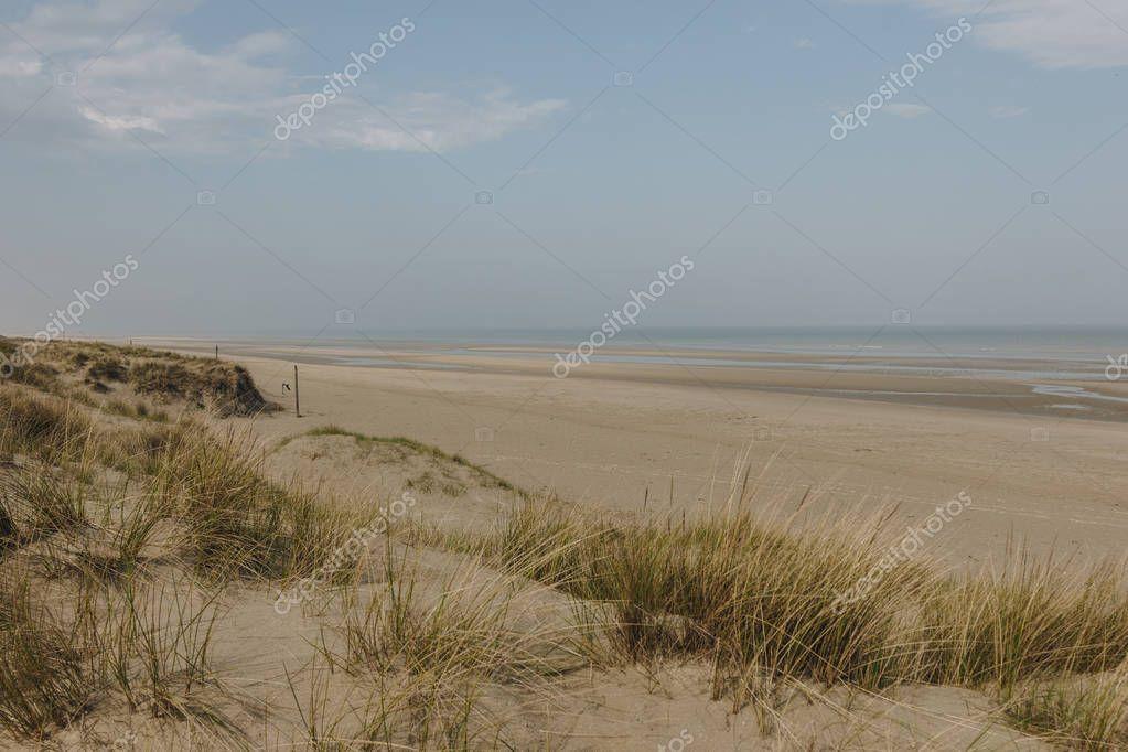 scenic shot of sandy seashore, Bray Dunes, France