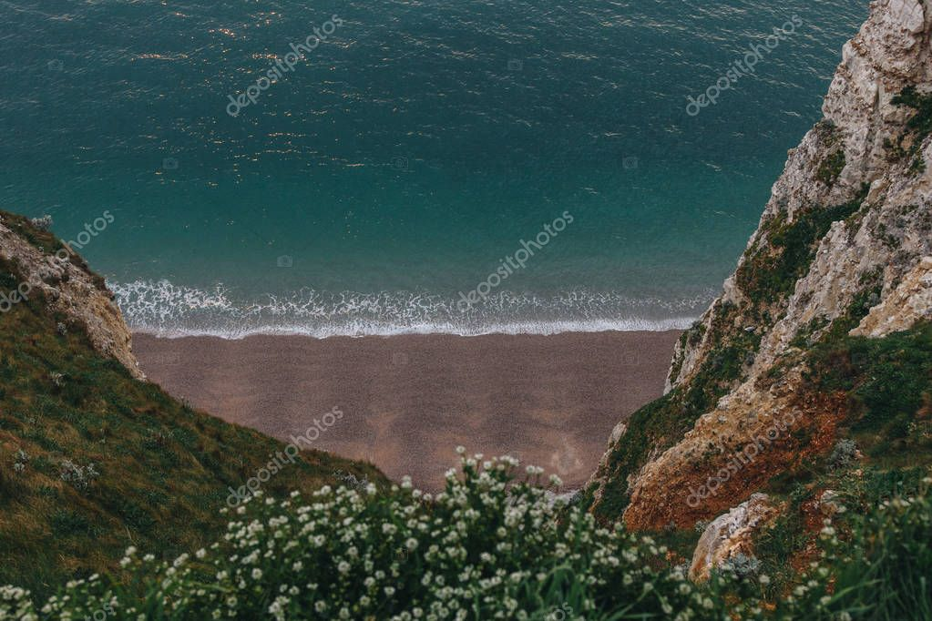 high angle view of beautiful beach with flowers on cliff on foreground, Etretat, France