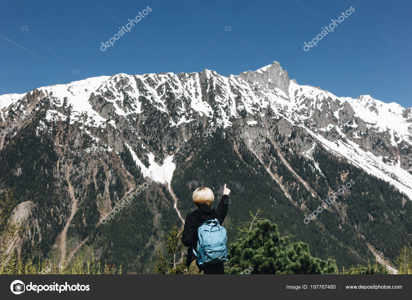 d2f30f9045 Back view of young woman with backpack pointing with finger at majestic  snow-capped mountains