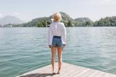 hát Nézd, fiatal nő, fából készült móló állt, és nézte a festői hegyi tó, bled, Szlovénia