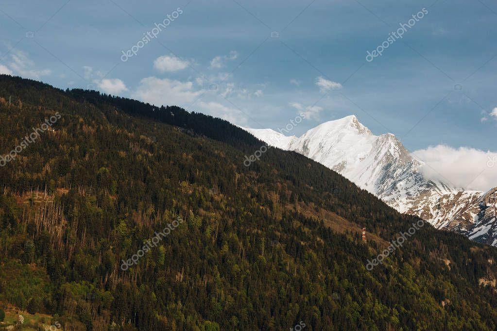beautiful green vegetation and snow-capped peaks in scenic mountains, mont blanc, alps