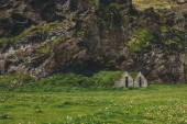 distant view of beautiful living houses with grassy roofs under mountain in Iceland