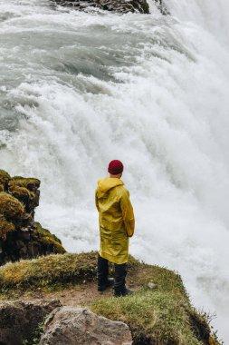 Rear view of man standing near Gullfoss waterfall in Iceland stock vector