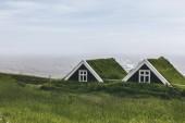 krajina s černými usedlosti v národním parku Skaftafell na Islandu