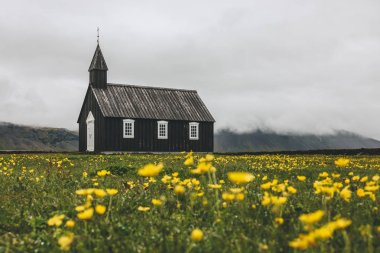 Dramatic shot of Budir church on green meadow with yellow flowers at Snaefellsnes, Iceland stock vector