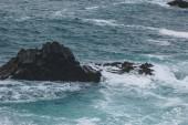 Fotografie waves