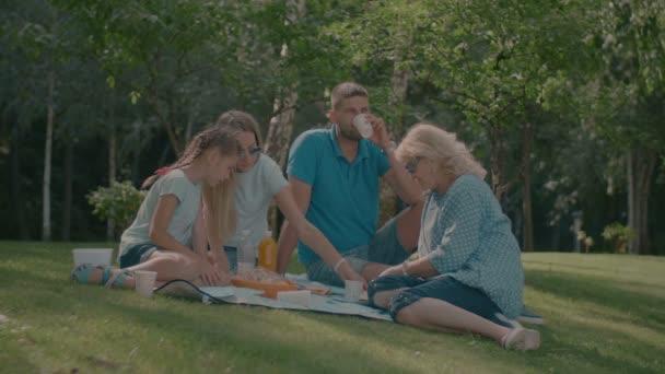 Uvolněné rodina pikniku v letním parku