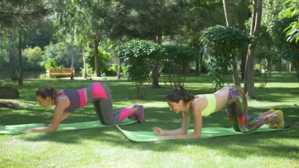 Active fit women exercising on yoga mats outdoors