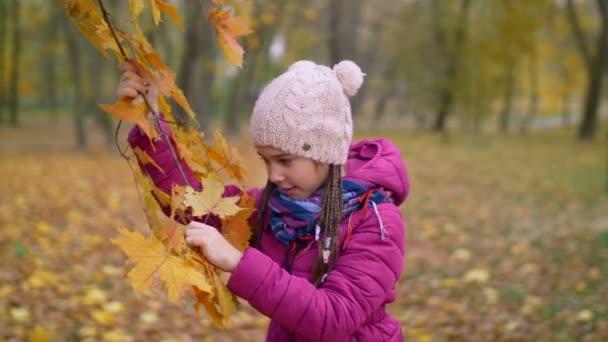 Kíváncsi lány szakadjon sárga juhar levelek ősszel