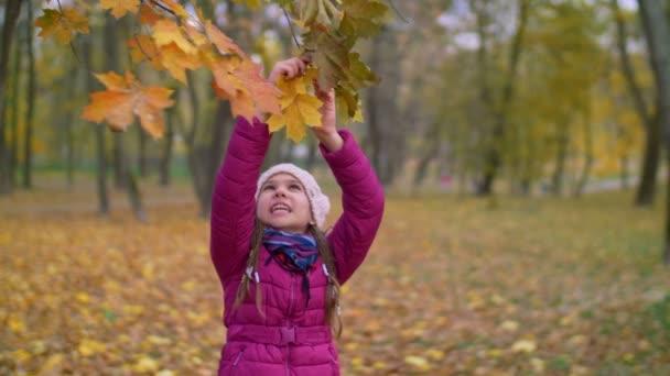Roztomilé dítě dosahuje větev stromu na podzim