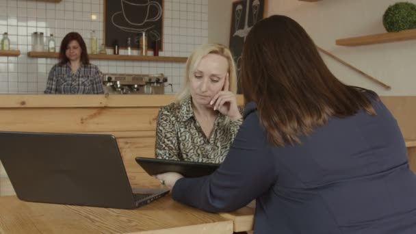 Female financial advisor consulting client in cafe