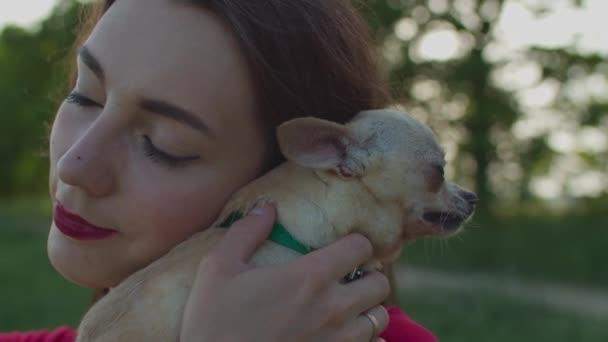 Csinos nő simogatja a csivava kutyáját a szabadban