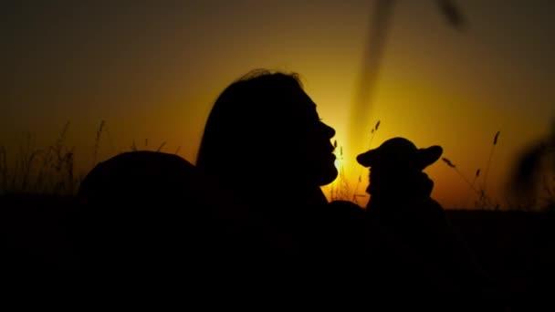 Nő chihuahua kutya pihentető a természetben alkonyatkor