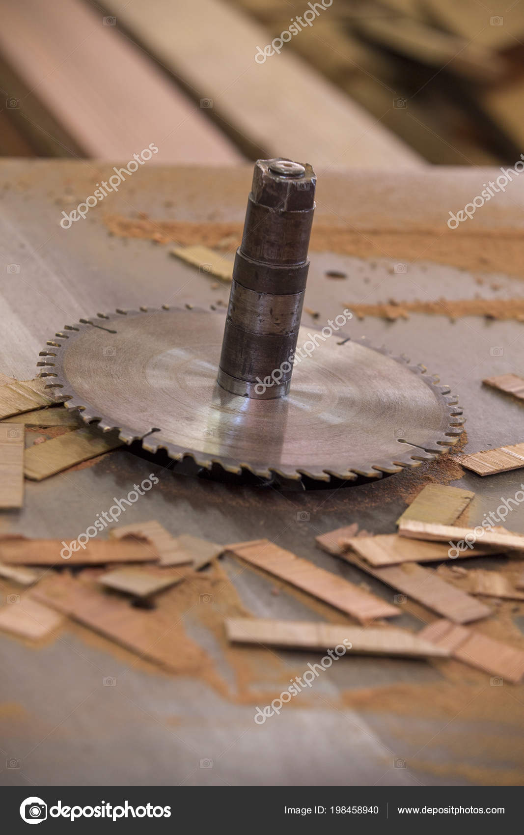 Wondrous Closeup Circular Saw Bench Woodworking Stock Photo Ocoug Best Dining Table And Chair Ideas Images Ocougorg