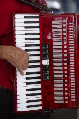 Accordionist playing accordion in popular Brazil party