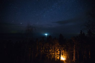 view of night sky with shining stars
