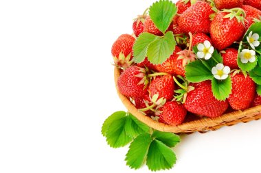 Wicker basket with tasty red strawberries on white background . Free space for text.