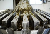 Seaweed salad mixed with carrot, spices and oil being processed in special machine