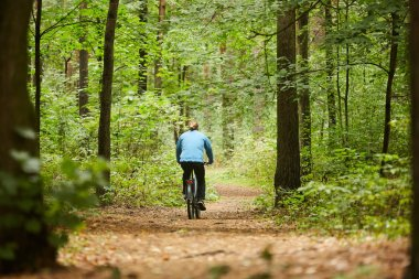 Back view of young active man sitting on bicycle and moving along forest path on summer weekend