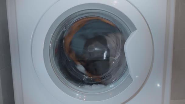 Womam óvatosan a napokban színes mosoda mosógép. Egy fiatal lány bezárja az ajtót, a mosógép láb. A mosógép dobot mossa a ruhákat. 4k videóinak.