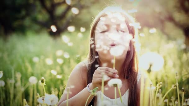 Portrait of cute girl blow on a dandelion in garden at sunset