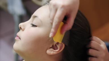 Βίντεο των κοριτσιών πιπίλισμα