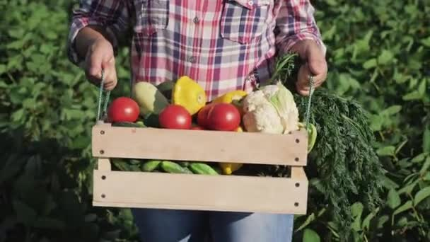 Farmer carries a wooden box with different vegetables