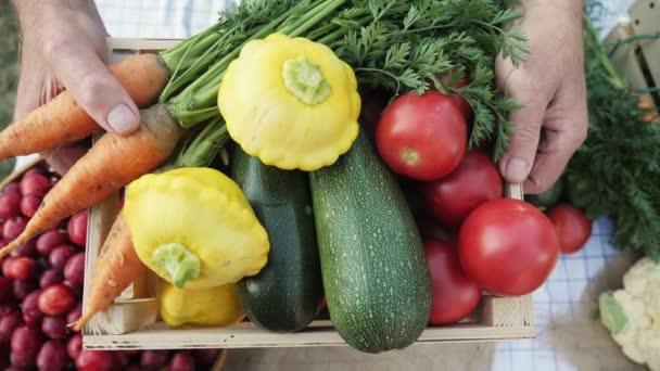 Idősek mans kezében tartó doboz friss zöldségekkel. Zár-megjelöl szemcsésedik. Bio-zöldségekkel a helyi mezőgazdasági termelők piacra
