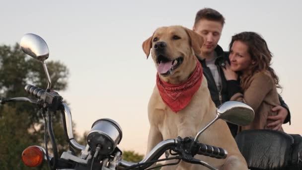 Pes sedí na motorce při pohledu do dálky pÛdû pozadí pár