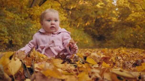Baby girl sits on autumn leaves