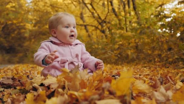 Mädchen sitzt auf Herbstblättern