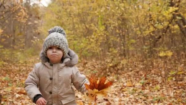 Milý chlapeček energicky pobíhající po podzimní park lane