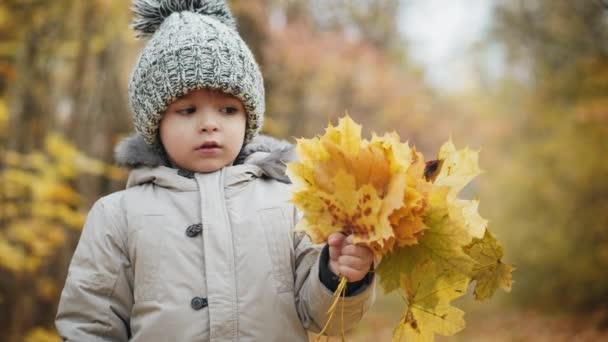 Milý chlapeček drží kytici podzimní listy