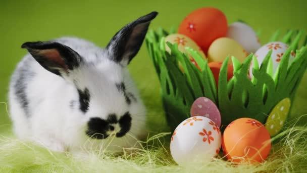 weißer Osterhase sitzt neben dekorativem Graskorb mit Eiern