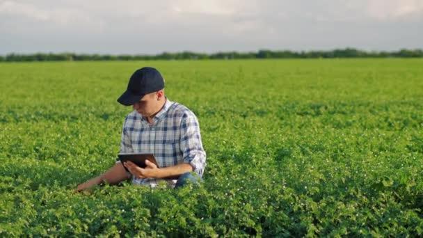Zemědělec pracující s tabletem v poli pro cizhrášek