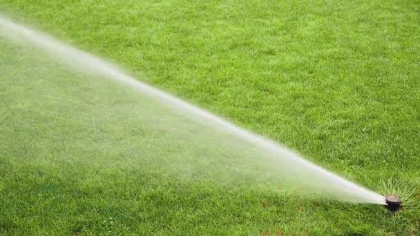 Rozprašovače Stříkání vody na trávu v fotbalovém poli