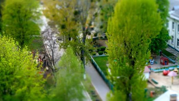 Timelapse spring in city