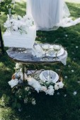 wheeled table with wedding cake and glasses of champagne on green grass
