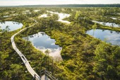 Fotografie aerial view of wooden bridge and green plants around in Riga, Latvia
