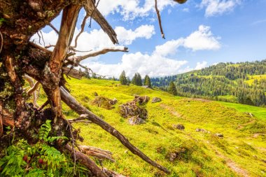 a few summer hiking impressions from the famous Hoch-Ybrig region in the Swiss Alps, HDR
