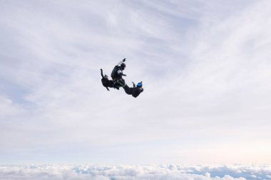 Skydiving. Three skydivers are falling in the cloudy sky.
