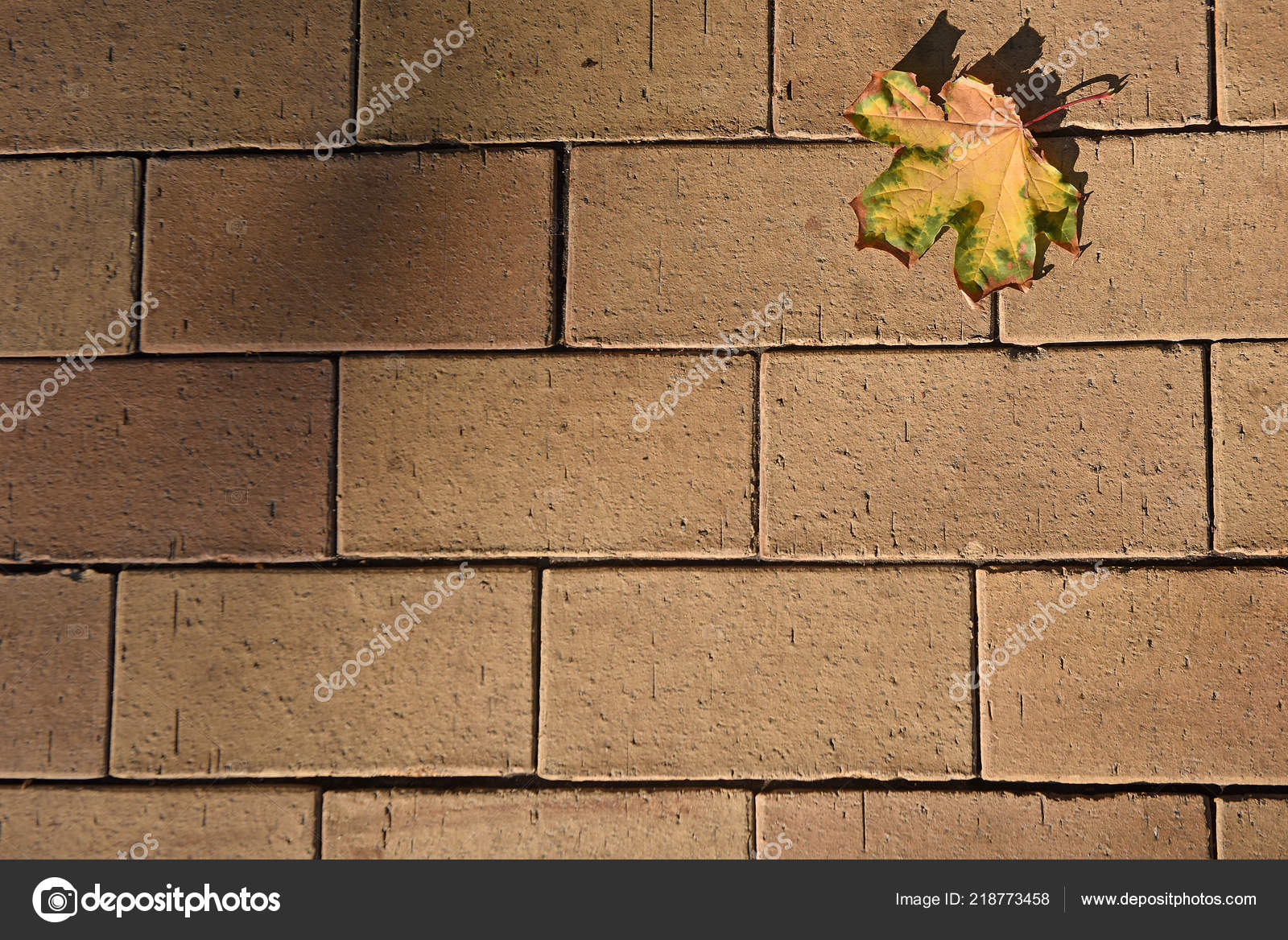 Yellow Leaves Lying Brick Wall Texture Sing Autumn Coming Maple Stock Photo