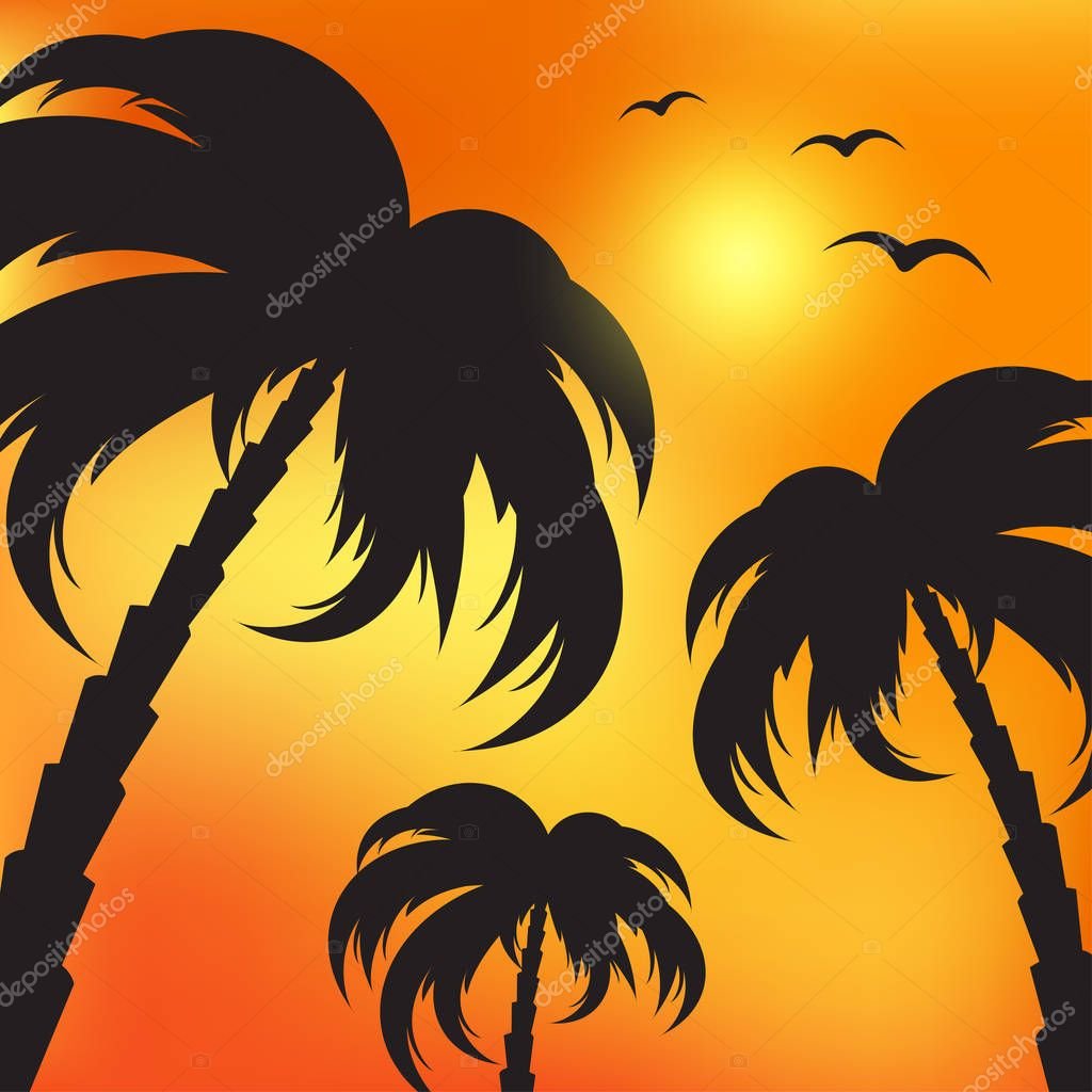 Illustration of palm silhouettes and evening sky