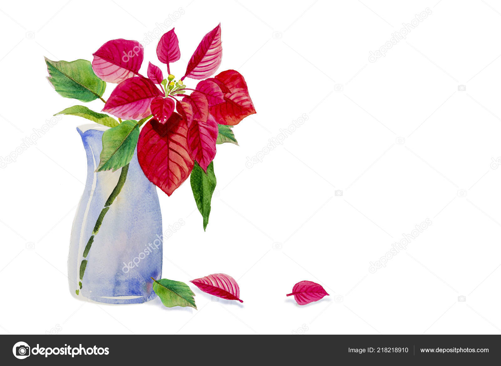 Christmas Star Vase Watercolor Painting Red Color Flower Beauty Nature Stock Photo C Paint Mm 218218910